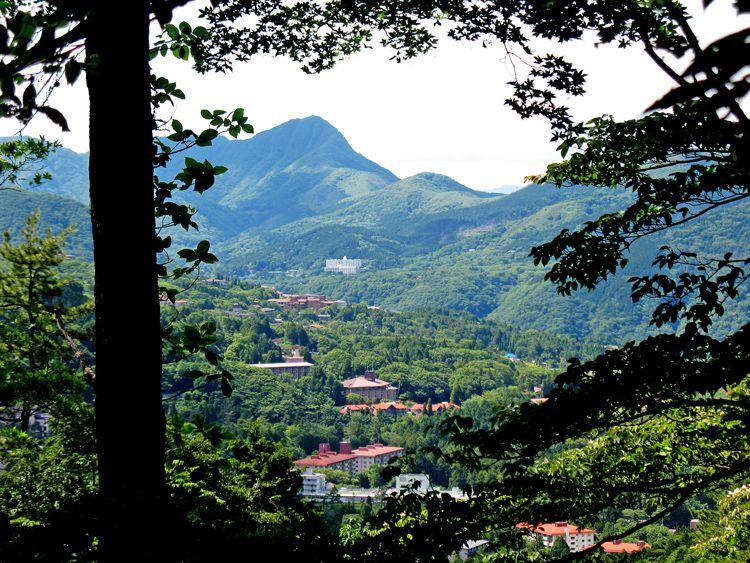 鷹巣山から下った小涌谷分岐から金時山を見る