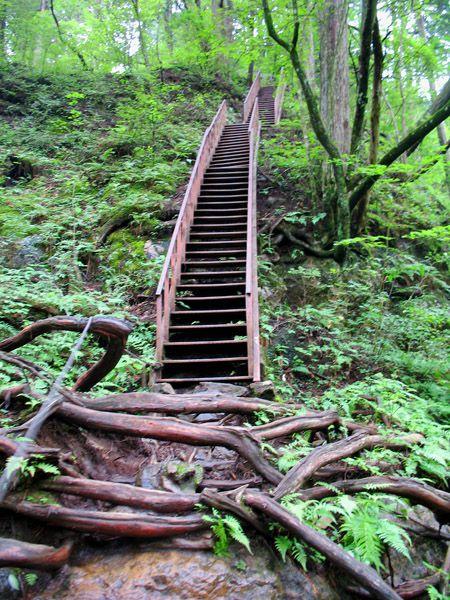 鉄階段の登りが次々に出てくる