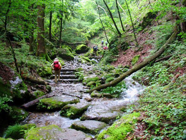 ロックガーデンを綾広ノ滝へ向けて歩く