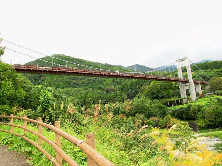大倉バス停、秦野戸川公園の水無川にかかる風の吊り橋