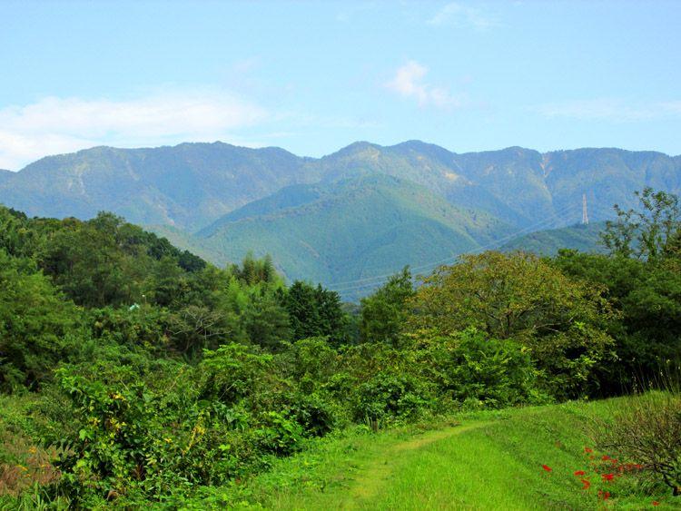 四十八瀬川の堤防道から丹沢(二つのピークの右が塔ノ岳)