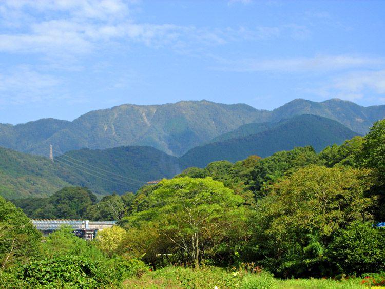 堤防道からみた丹沢(右端が塔ノ岳)