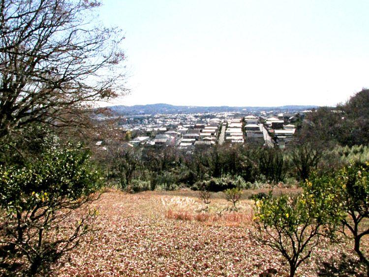 野仏の道から見た鶴巻温泉の住宅地