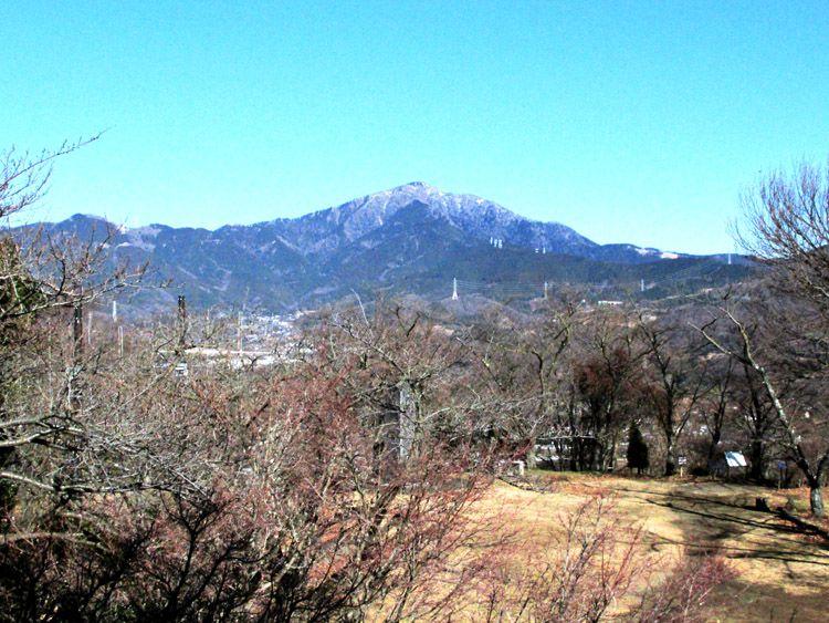 権現山展望台からの大山