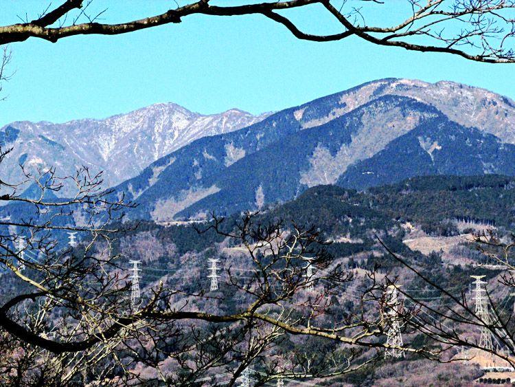 馬車道からの丹沢・塔ノ岳(左)と三ノ塔(右)