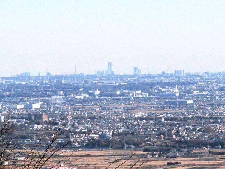 権現山からの横浜方面(中央が横浜ランドマークタワー)